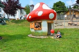 muchomor domek dla dzieci